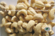 Vietnamese Cashew Nut Kernels LBW240 Delivery from Ho Chi Minh City